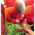 Then we met Max the bearded dragon
