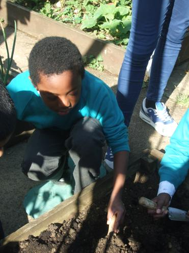 Turning mud and compost
