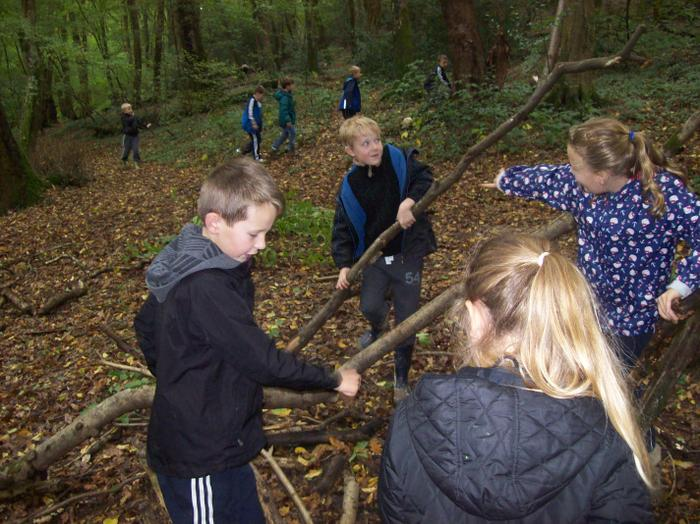 Creating our dens