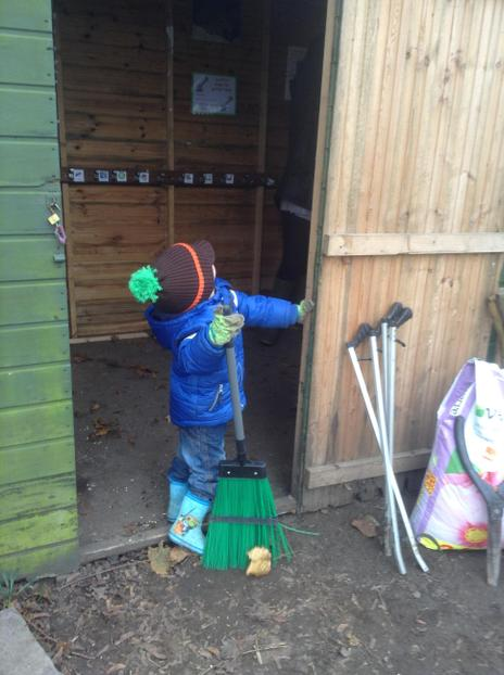 Cleaning the shed
