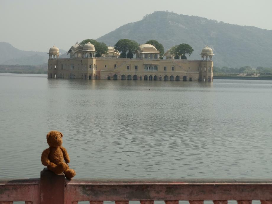 Ted's adventures in India