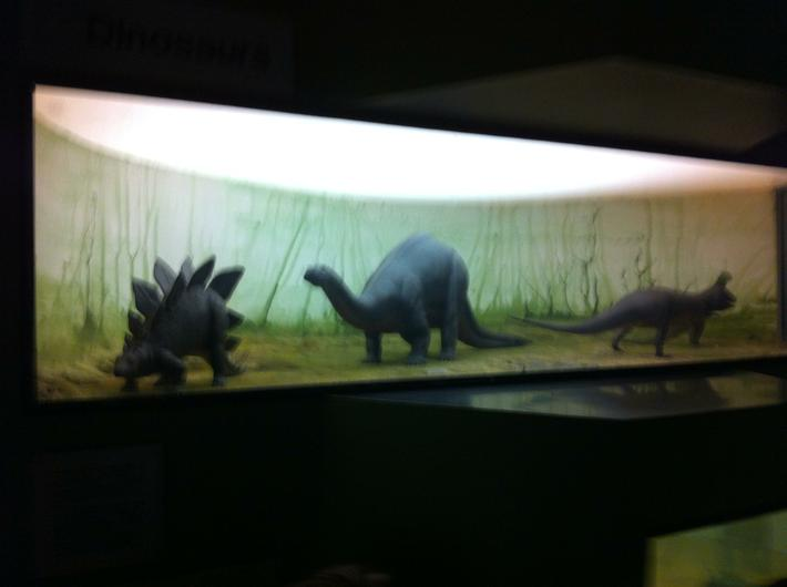 We saw lots of model dinosaurs.