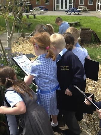 We saw lots of ants in the garden!