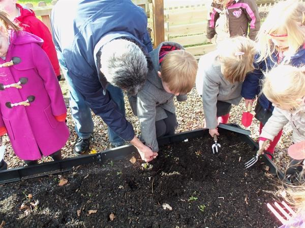 Preparing our vegetable patch.