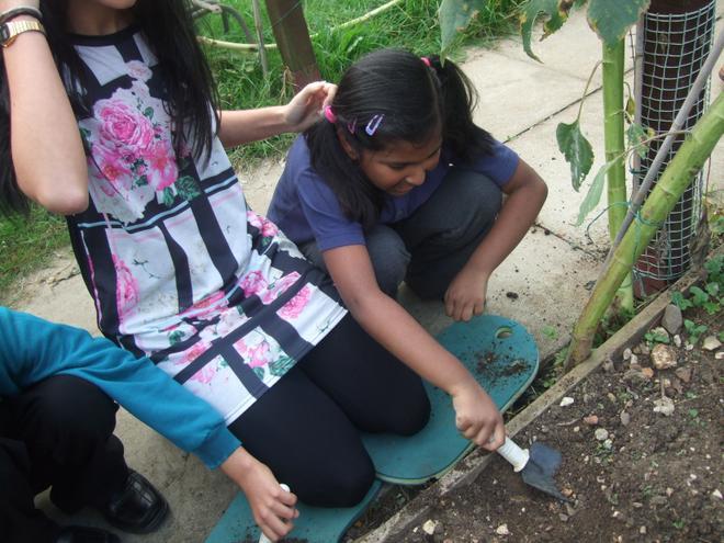 digging and weeding