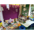 Reading and sensory area