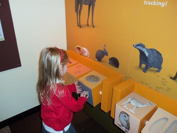 Exploring in the museum