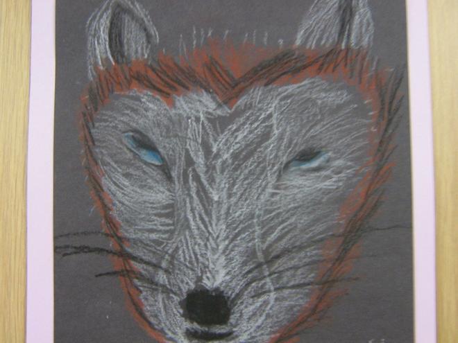 Year 3/4 Arctic Fox
