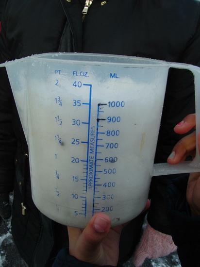 1 Litre of snow