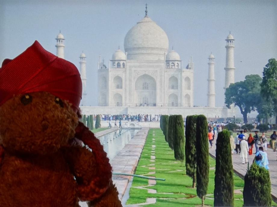 Ted by the Taj Mahal