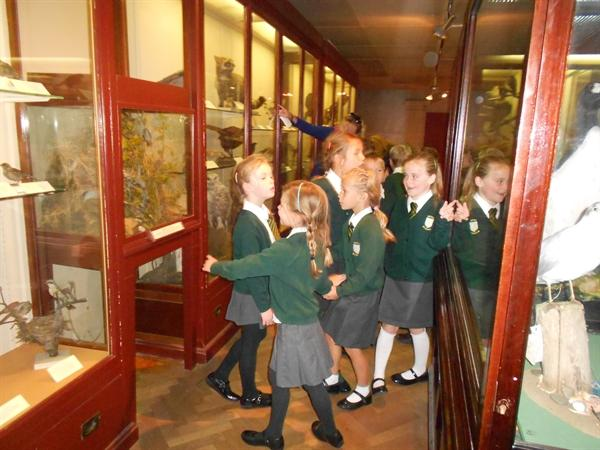 Our trip to Bristol museum