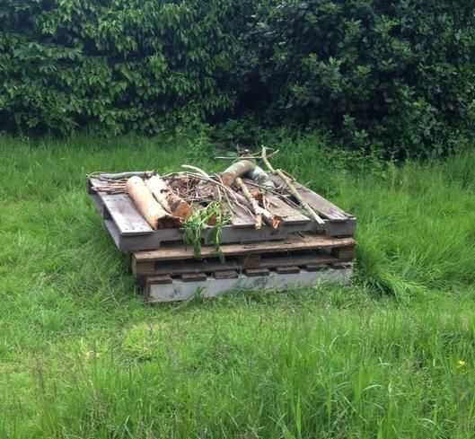 The start of the first bug hotel.