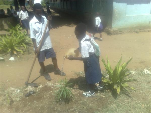 Gardening Club at Martinshamba December 2012