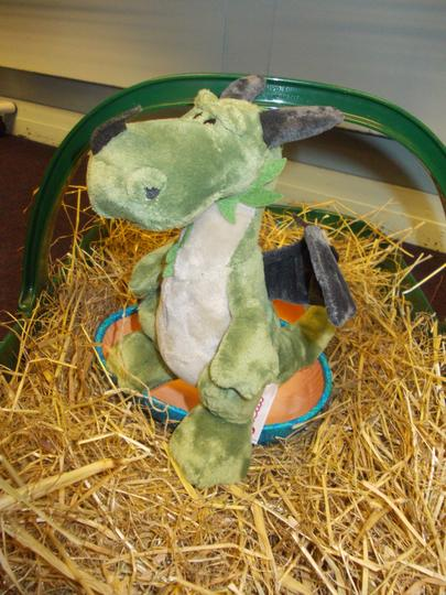 Charlie the dragon has hatched!