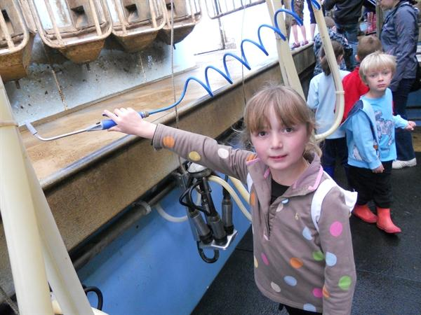 We visited the milking parlour