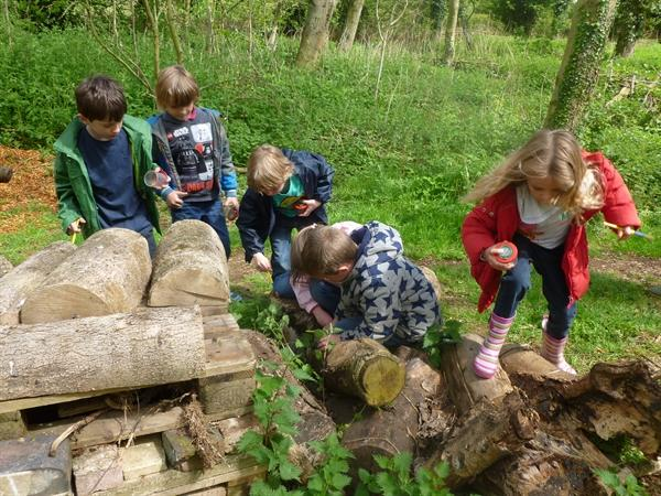 Our visit to Rutland Water