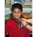 Reptile Day June 2013