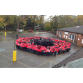 Childwall CE Primary School Human Poppy