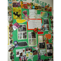 Greenfingers Club Display