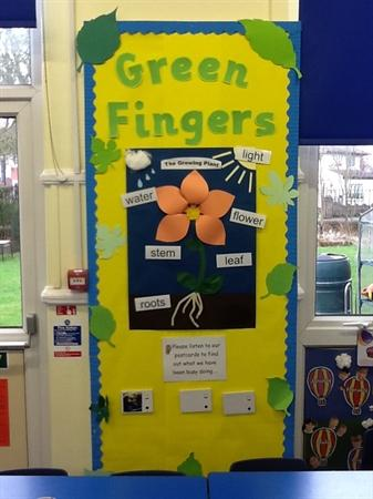 Yellow 1 Green Fingers display