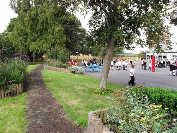 Our main playground