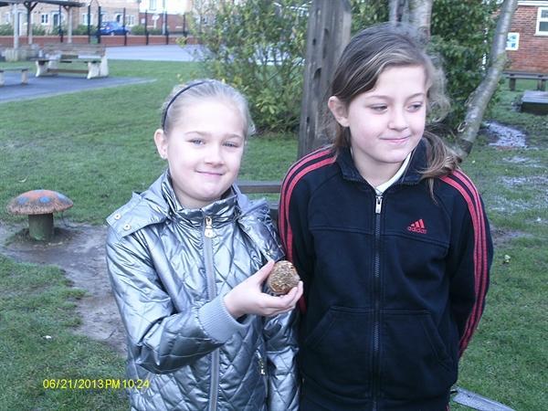 Planting bulbs kindly donated