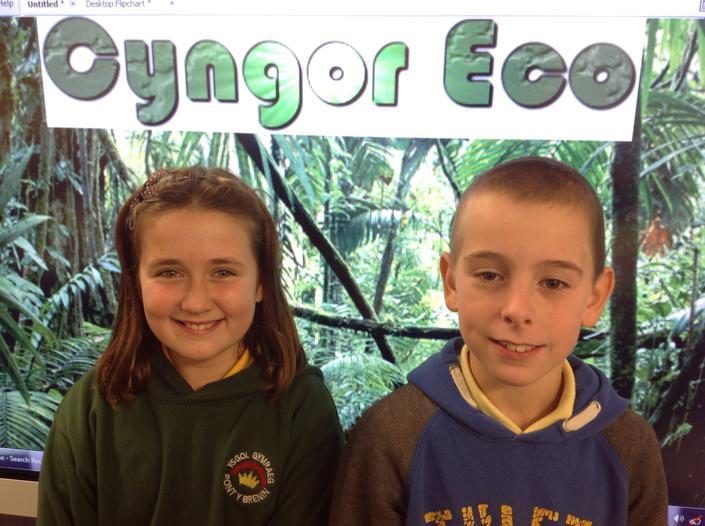 Cyngor Eco