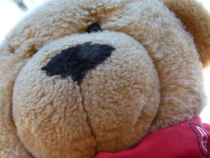 Travelling Ted