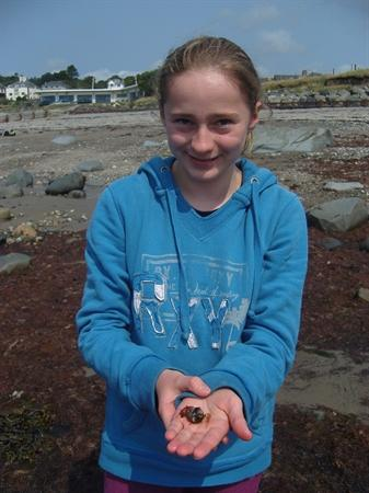Rock Pooling and Ice Cream