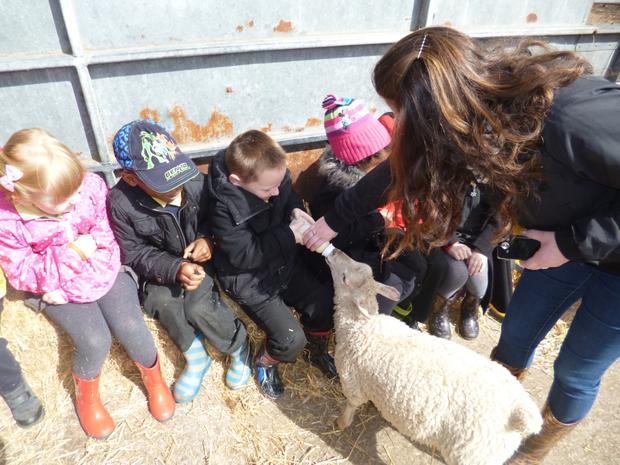 Reception M visit Smithill's Farm