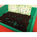Writing in the soil
