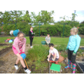 More of The Gardening Club