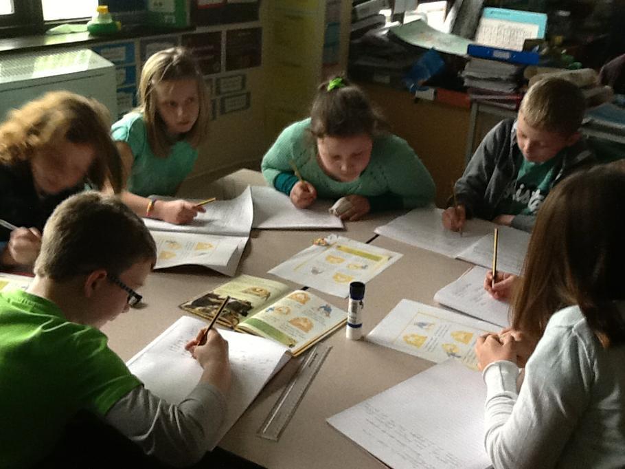Gweithgareddau Eco / Eco Activities