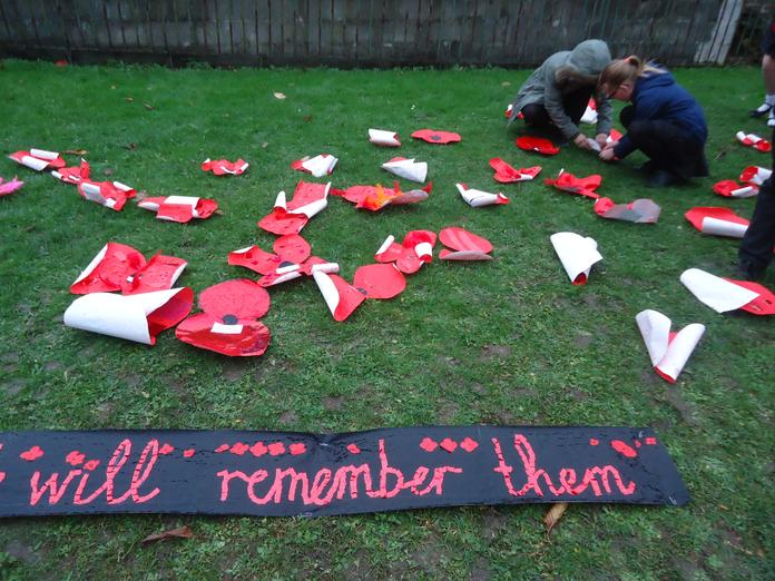 Pinning the poppies into the ground