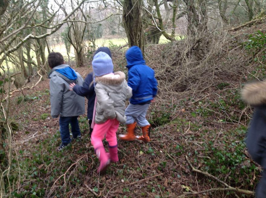 In Badgers Wood
