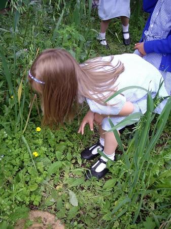 Exploring our wild garden