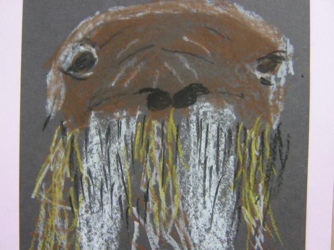 Year 3/4 Walrus