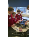 Dissecting a heart was great fun!