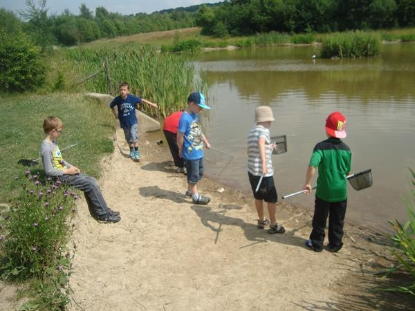 Pond Dipping with the big nets