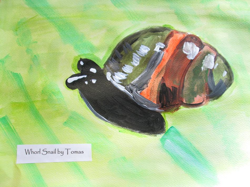 Whorl Snail