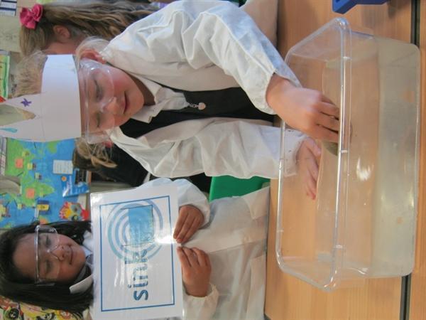 Science Week 2014