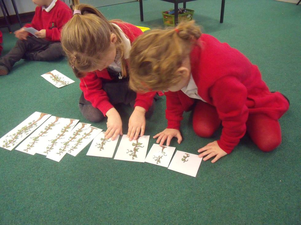 In maths, we are ordering by height