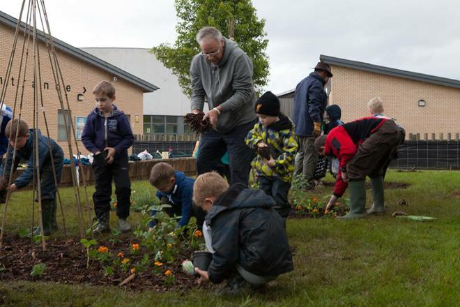 Team work planting