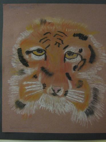 Year 5 & 6 tiger