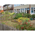 The Childrens' Flower & Veg Gardens