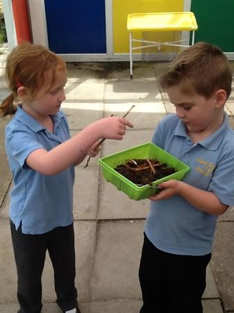 Looking forward to exploring our habitats