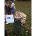 Finding long and short leaves