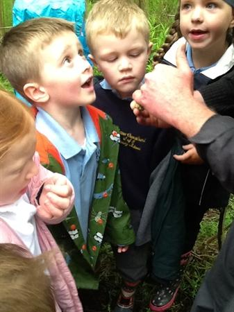 We had lots of questions about mini beasts!
