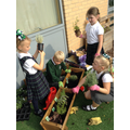 We worked together to plant the flowers and herbs.