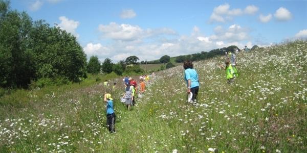 Cumbria Wildlife Day (Summer 14)